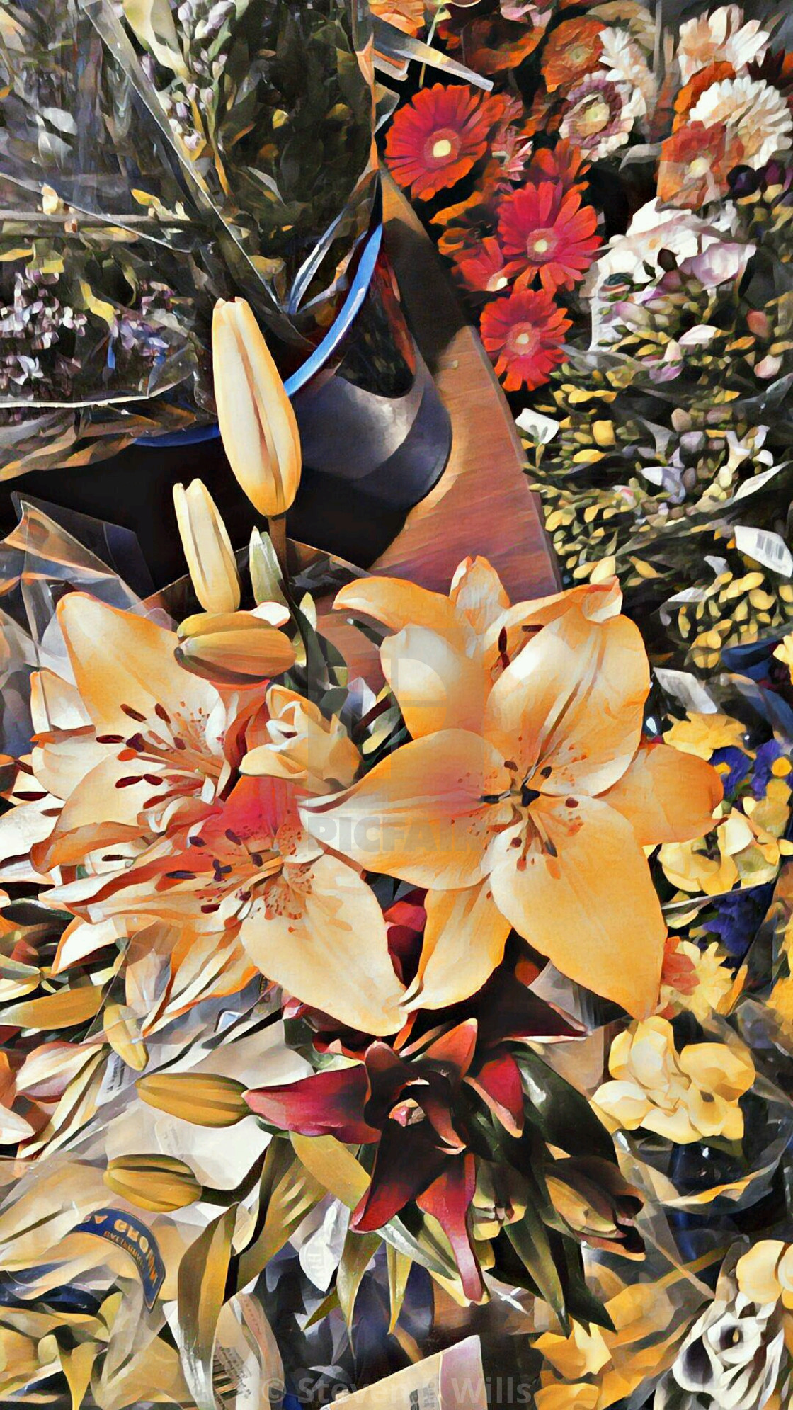 """""""Foral beauty"""" stock image"""