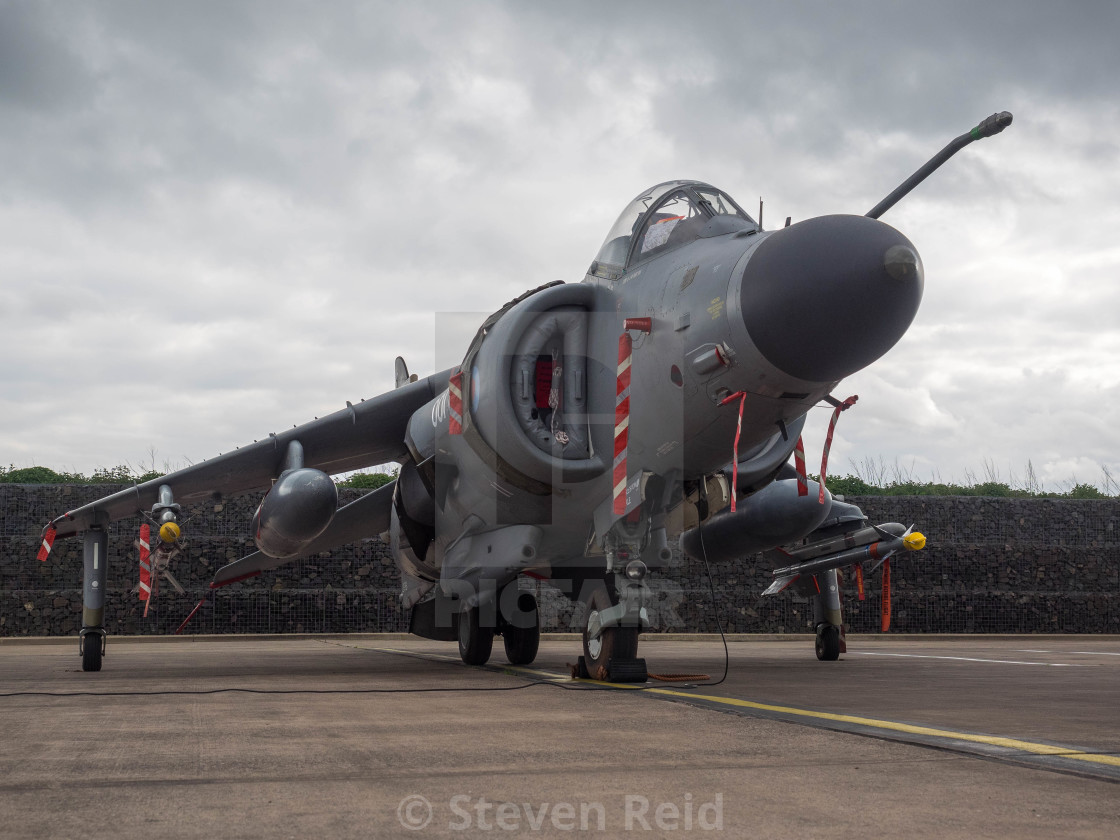 """Sea Harrier"" stock image"