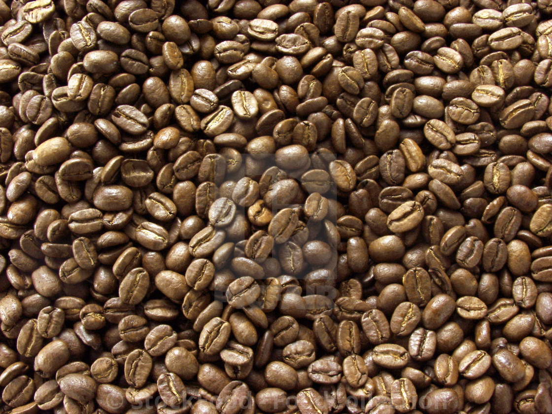 """Coffee Beans (Full Frame)"" stock image"