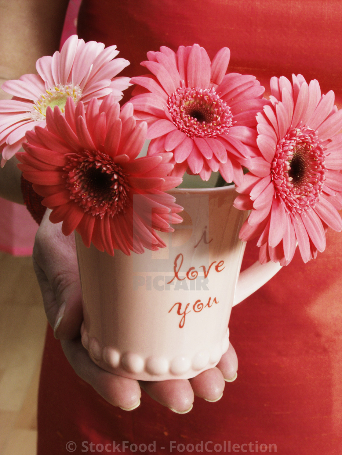 Hand Holding I Love You Cup With Flowers License Download Or