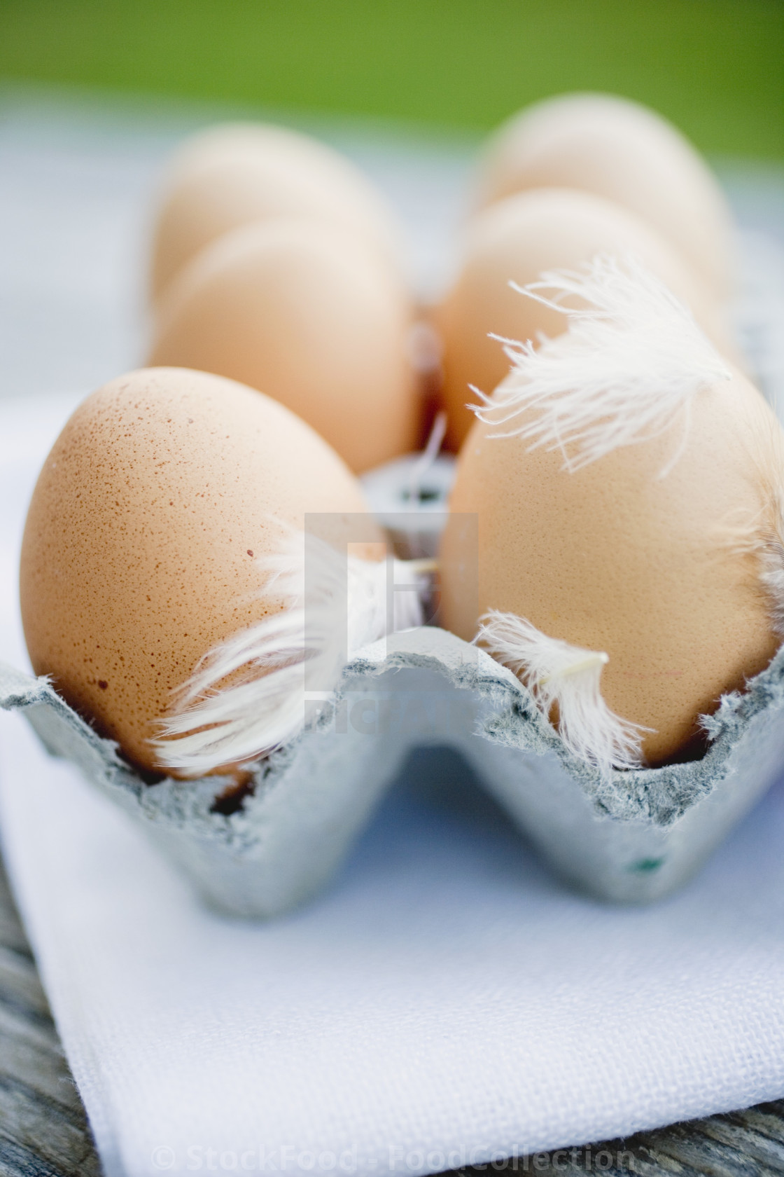 """Brown eggs with feathers in an egg box"" stock image"
