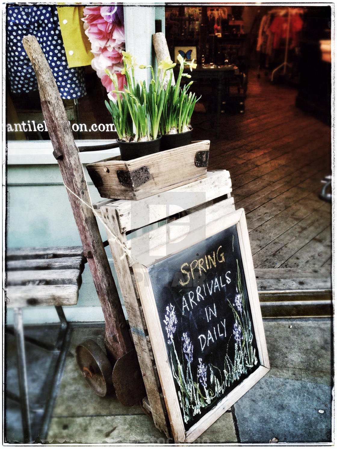 Spring Flowers On Display Boardwhitechapellondon License For