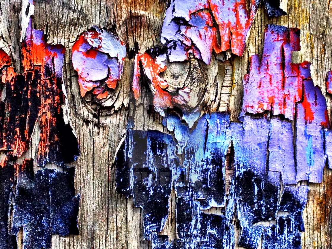 """Peeling graffiti on wooden fence"" stock image"