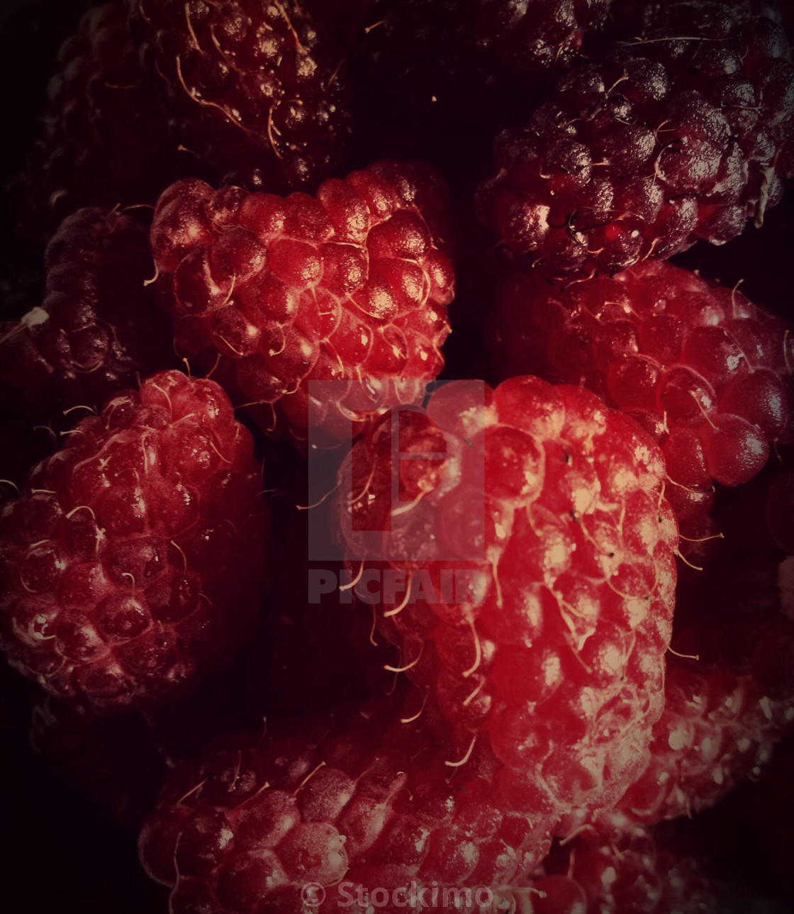 """Juicy raspberries"" stock image"