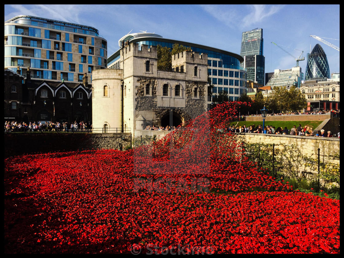 """A general view of the Blood Swept Lands And Seas Of Red ceramic poppy installation at the Tower Of London in remembrance of the fallen of The Great War."" stock image"