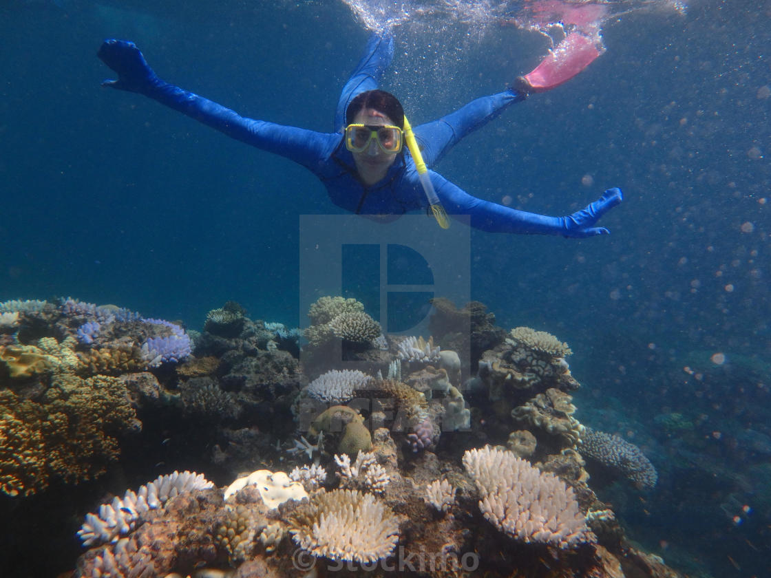 """Nice snorkling in the great barrier reef"" stock image"