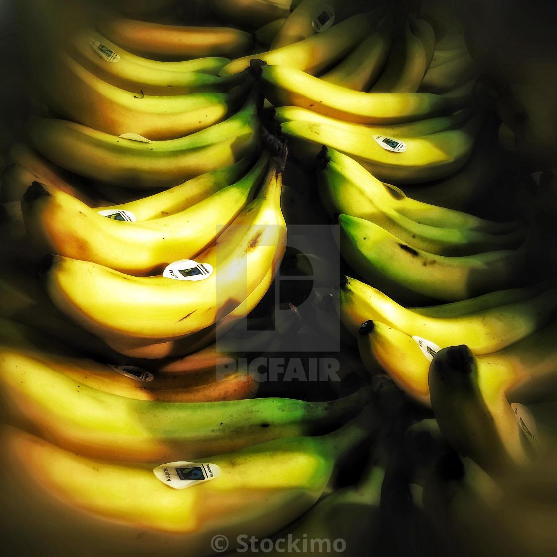 Fair trade bananas on supermarket shelf - License for £31.00 on Picfair