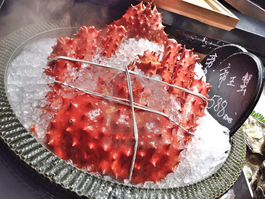 Tied & Iced Red Spiky King Crab For Sale On Metal Pot Filled