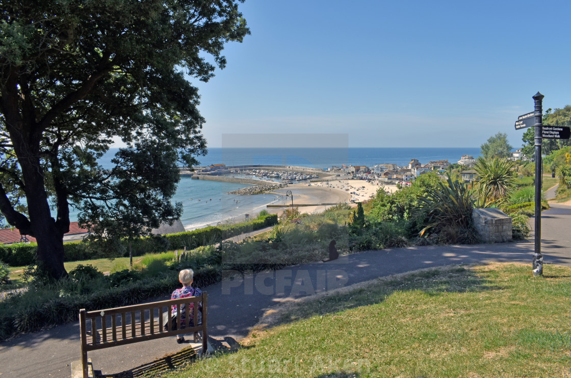 """""""Lyme Bay from Park"""" stock image"""