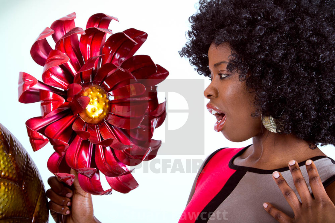 """Flower Power"" stock image"