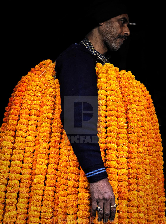 """Robe of Marigold"" stock image"
