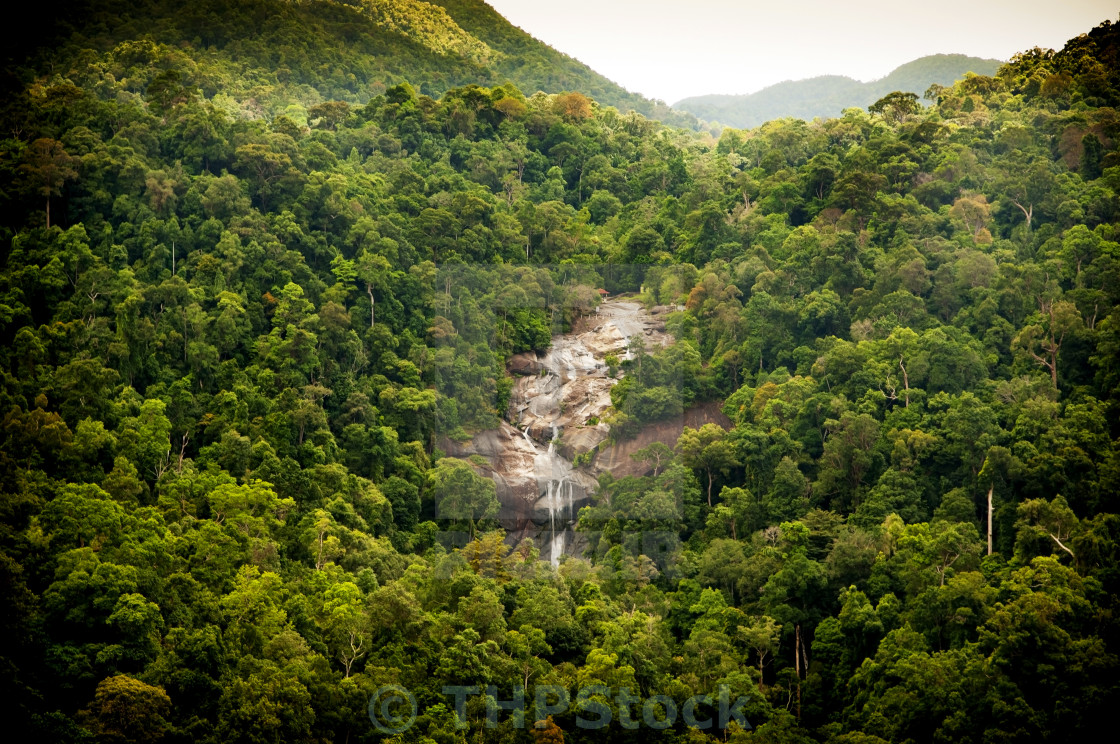 """Jungle Waterfall"" stock image"