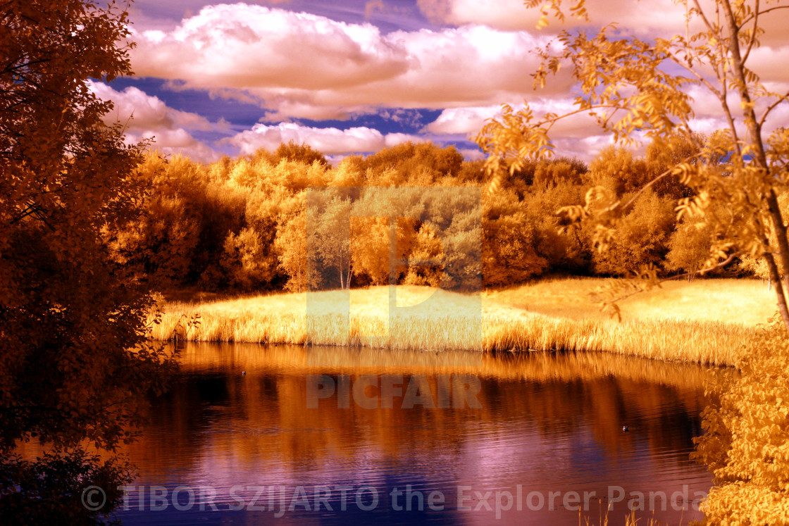 """""""Lake under the trees in infrared photo"""" stock image"""