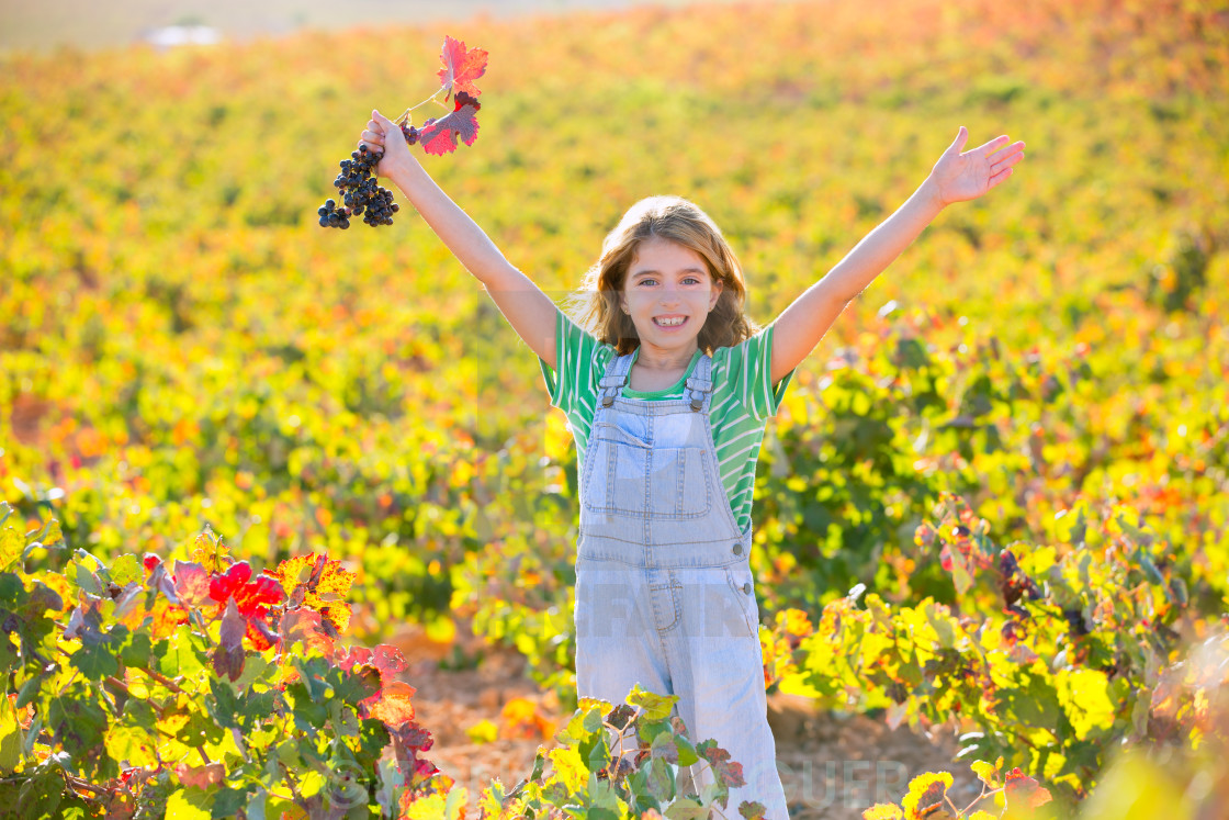 """""""Kid girl in happy autumn vineyard field open arms red grapes bunch"""" stock image"""