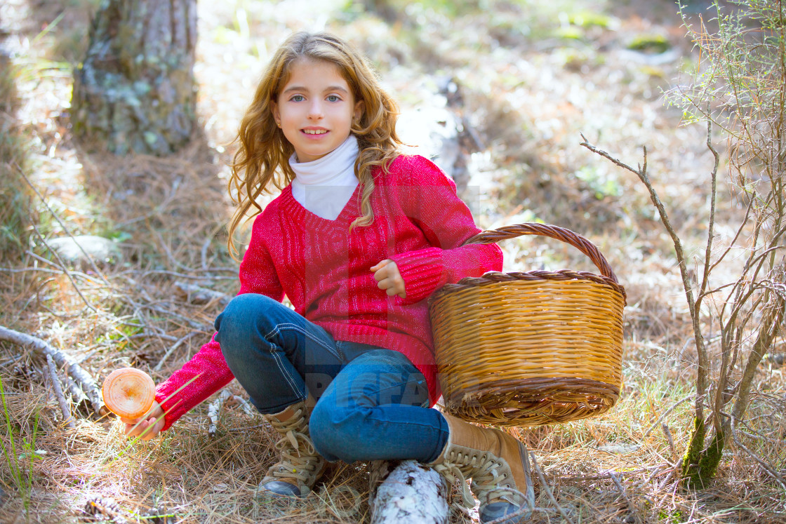 """""""kid girl searching chanterelles mushrooms with basket in autumn"""" stock image"""