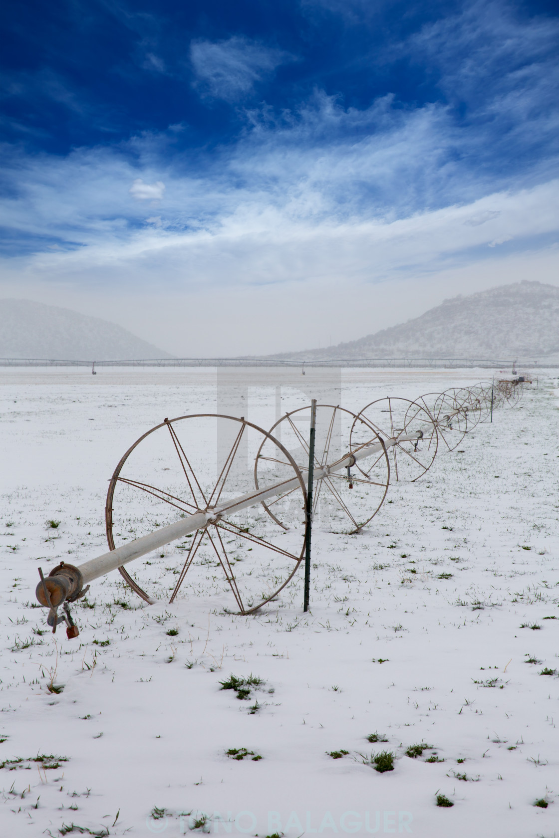 """""""Cereal fields with irrigation wheels with snow in Nevada"""" stock image"""