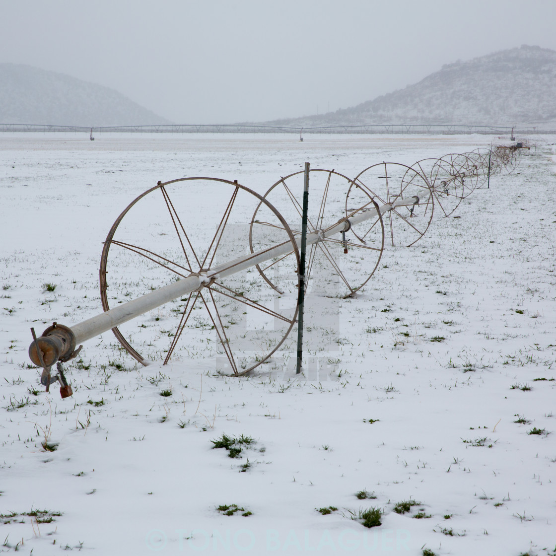 """Cereal fields with irrigation wheels with snow in Nevada"" stock image"