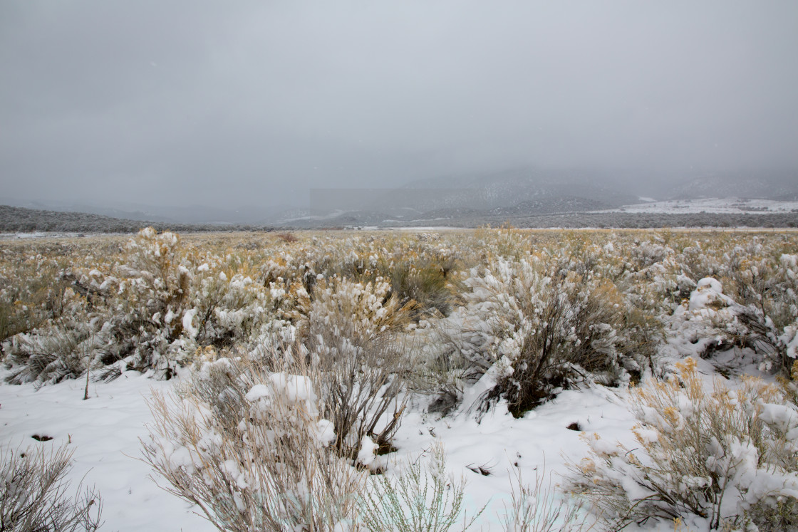"""Nevada USA spring snow in the mountains"" stock image"