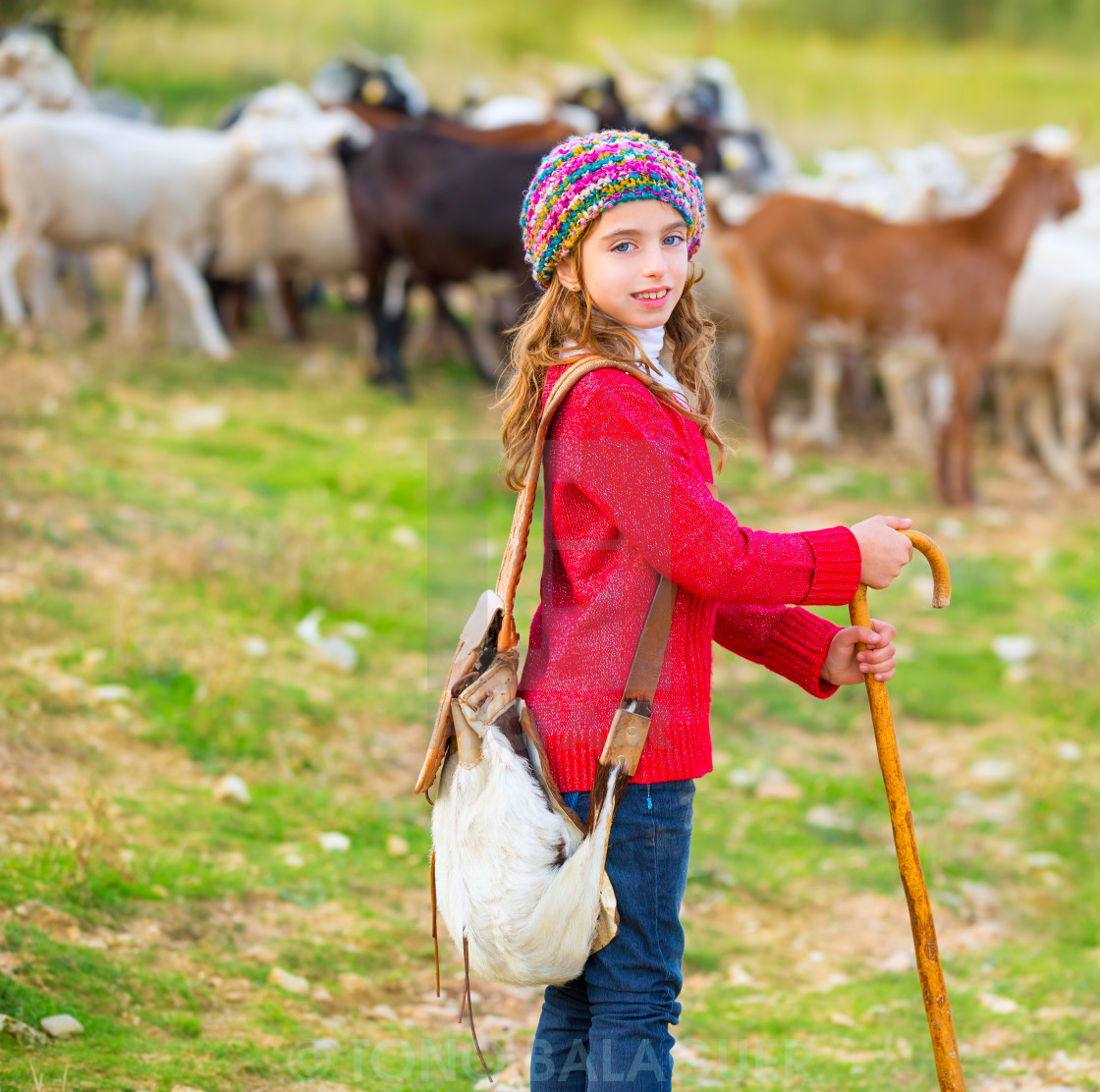 """""""Kid girl shepherdess happy with flock of sheep and stick"""" stock image"""