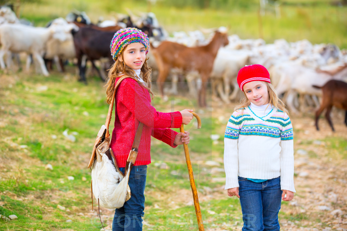 """""""Kid girl shepherdess sisters happy with flock of sheep and stick"""" stock image"""