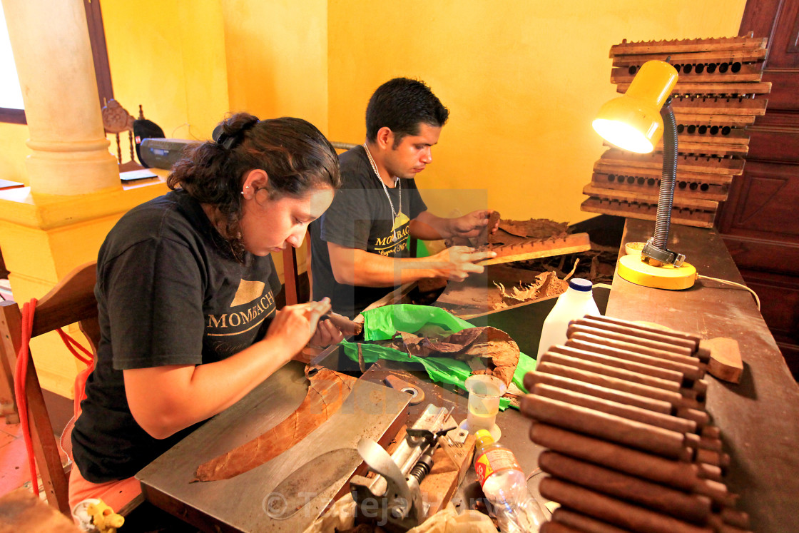 """Handmade Cigars, bunchers and rollers"" stock image"