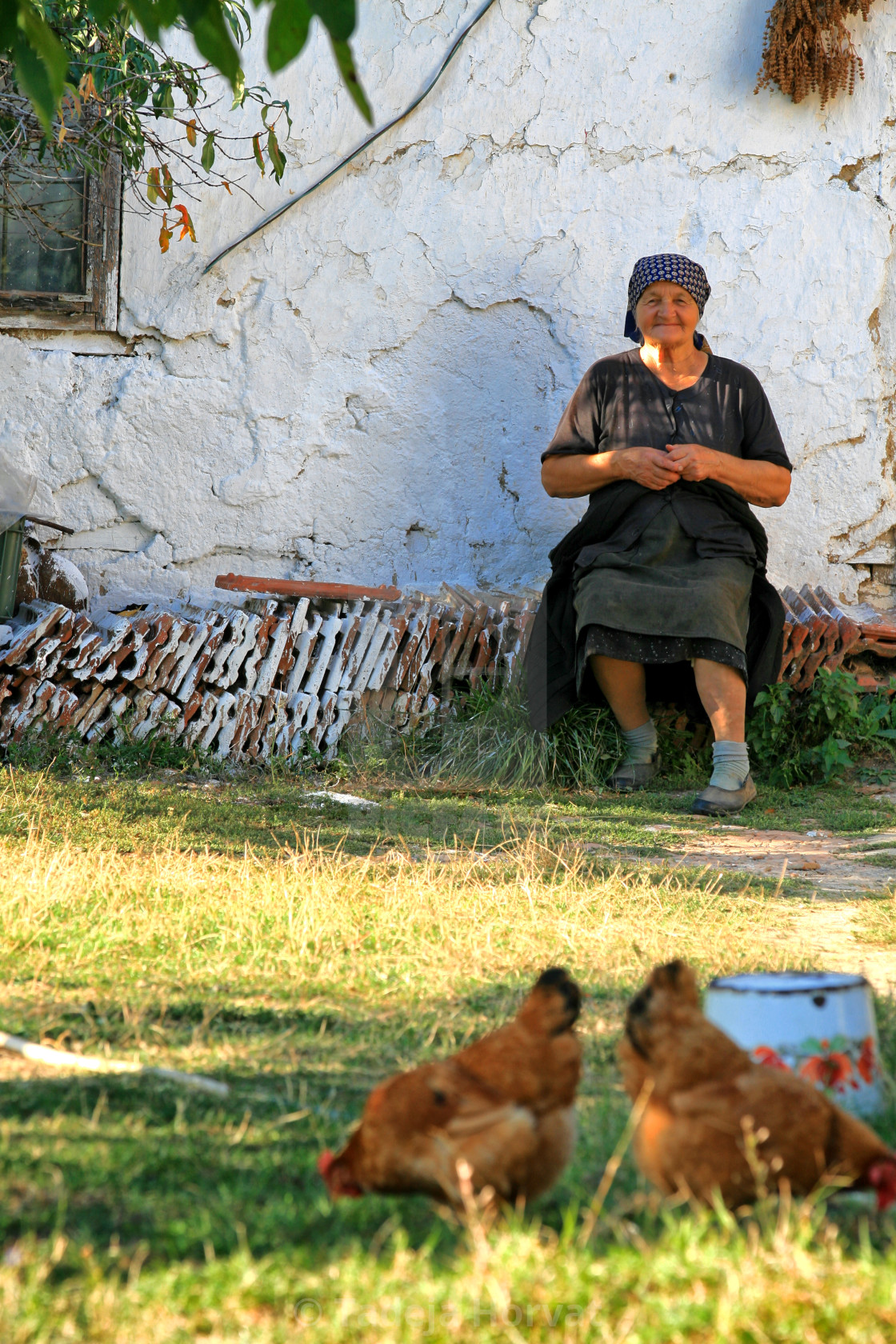 """Farm woman"" stock image"