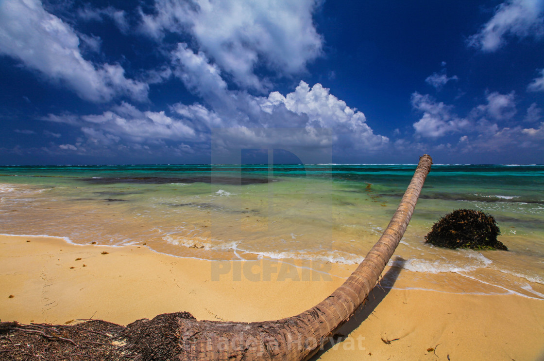 """Little Corn Island"" stock image"