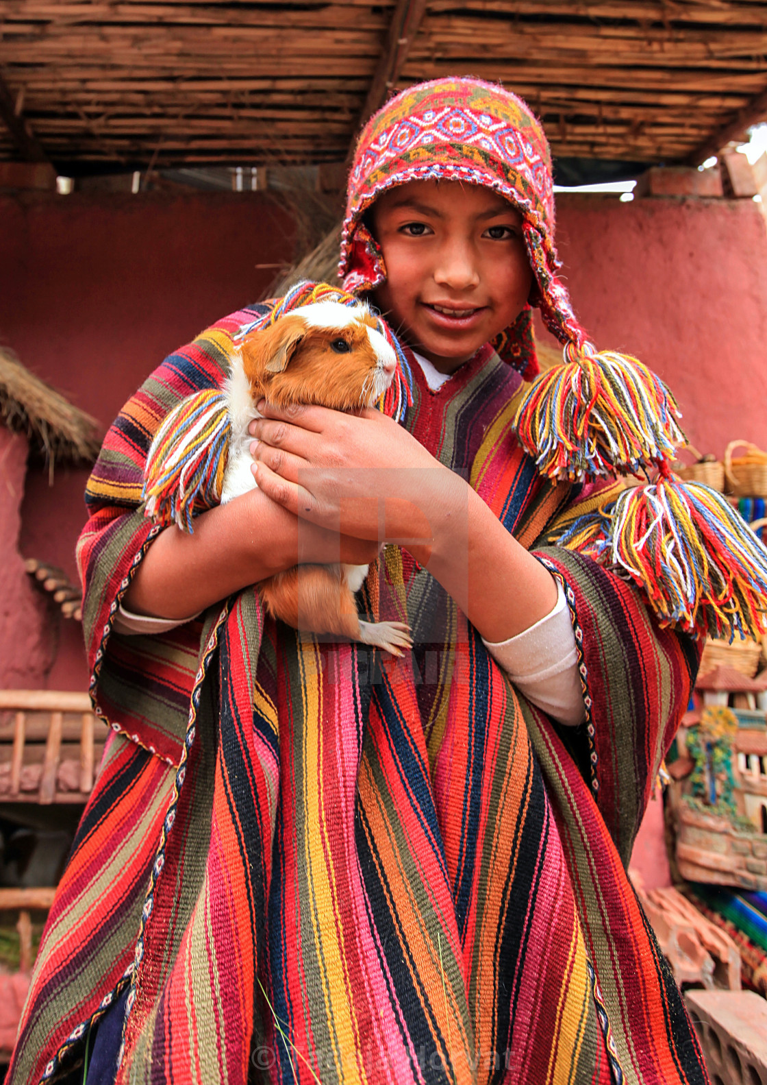 """Young Peruvian boy in traditional dress"" stock image"