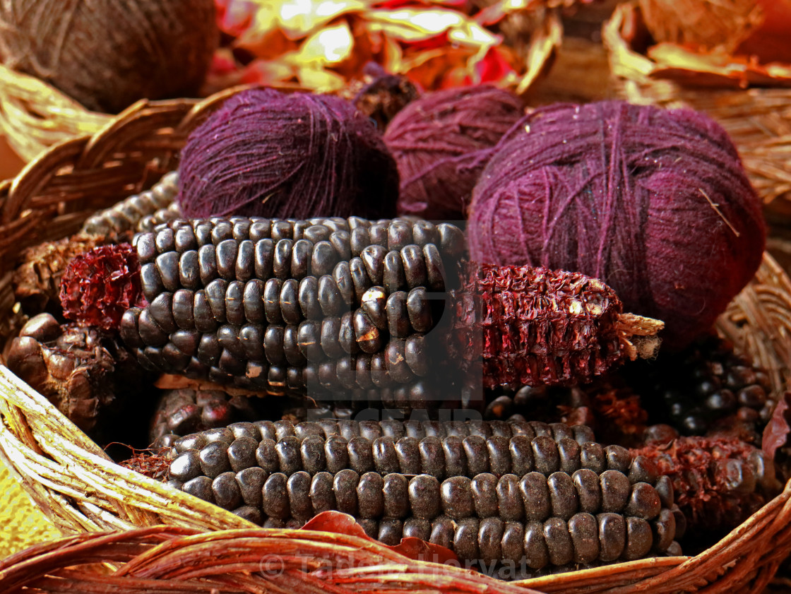 """Purple natural dye"" stock image"