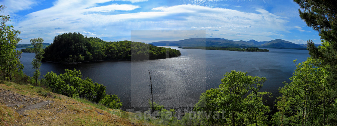 """Inchcailloch Island"" stock image"