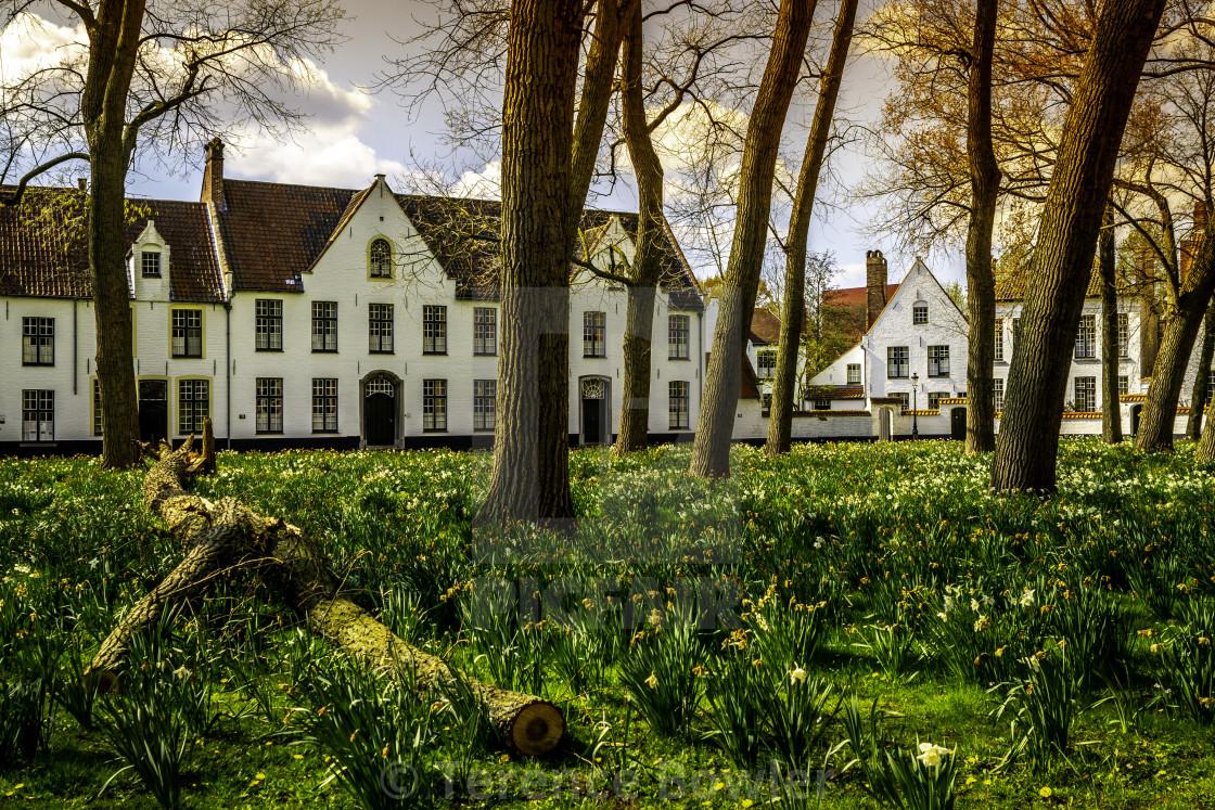 """Buildings in Bruges, Belgium"" stock image"
