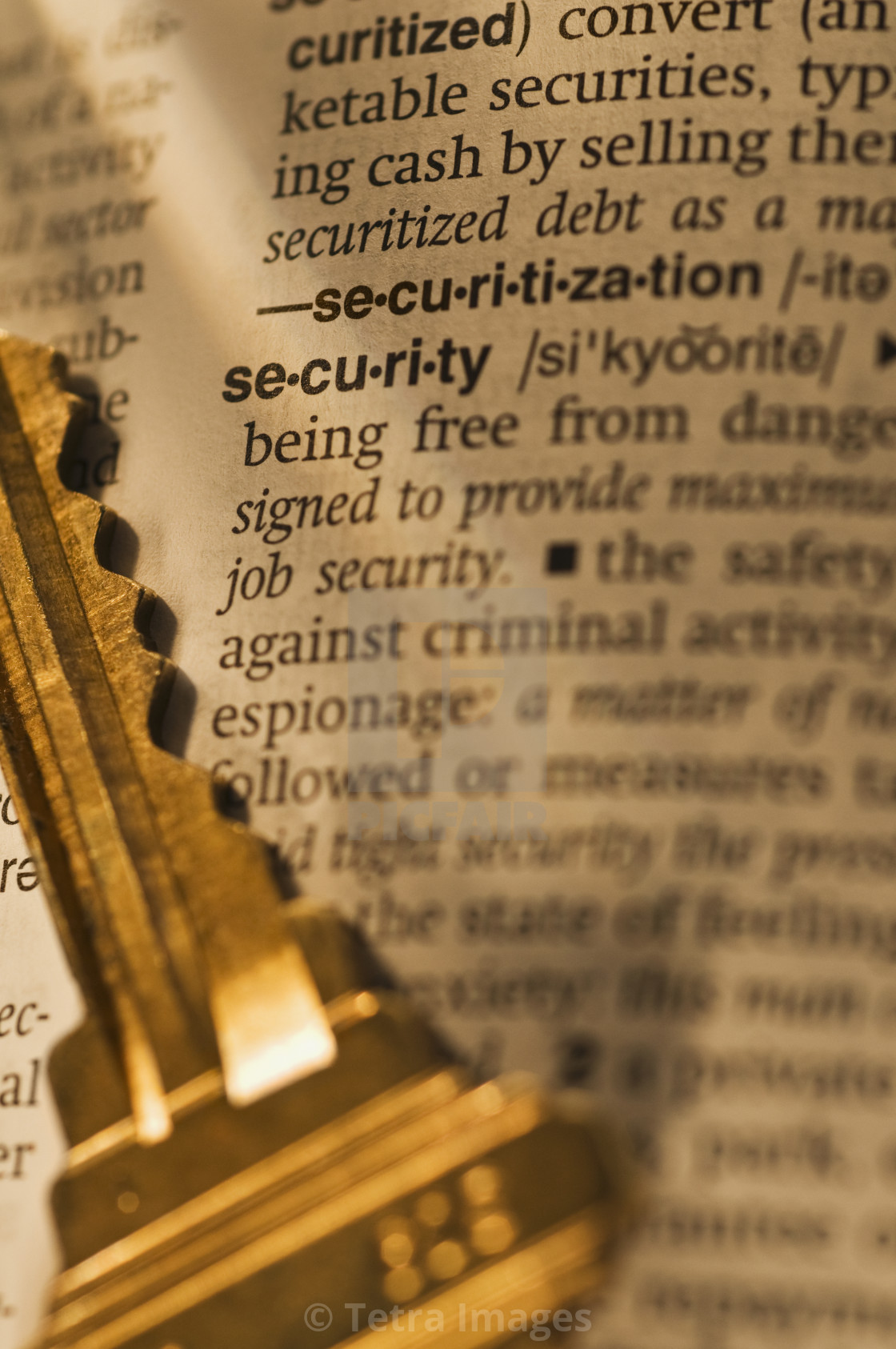 Definition of security in dictionary and key - License, download or