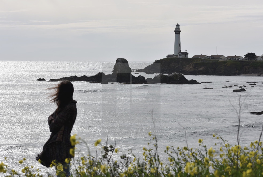 """Abbi at Pigeon Point"" stock image"