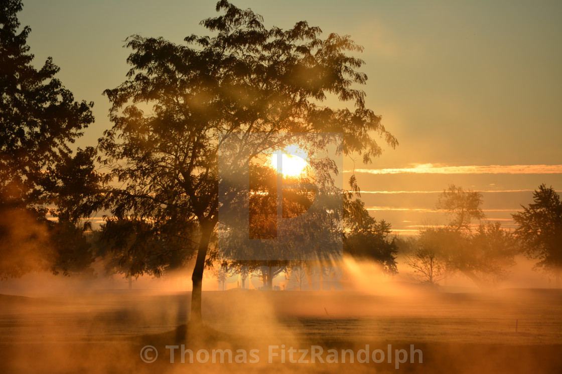 """Misty morning sunrise"" stock image"