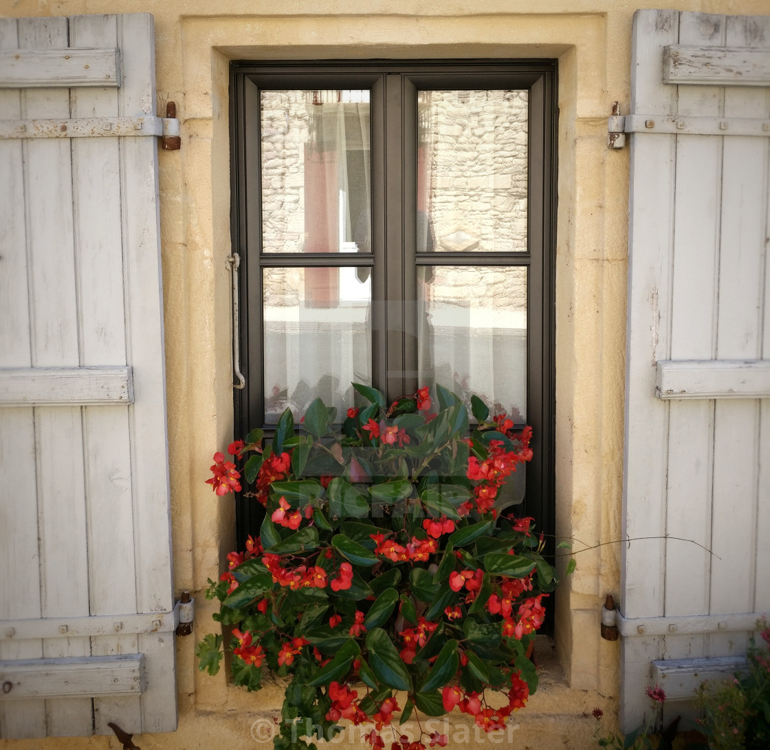 French Window Shutters License Download Or Print For