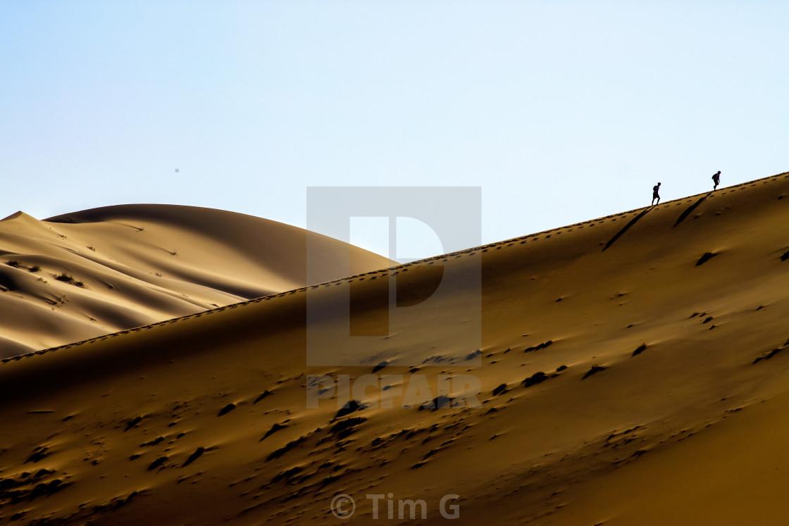 Climbing Big Daddy Dune Sossusvlei Namibia License
