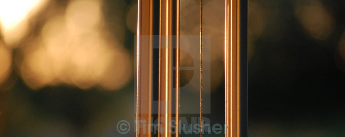"""""""Golden Chimes"""" stock image"""