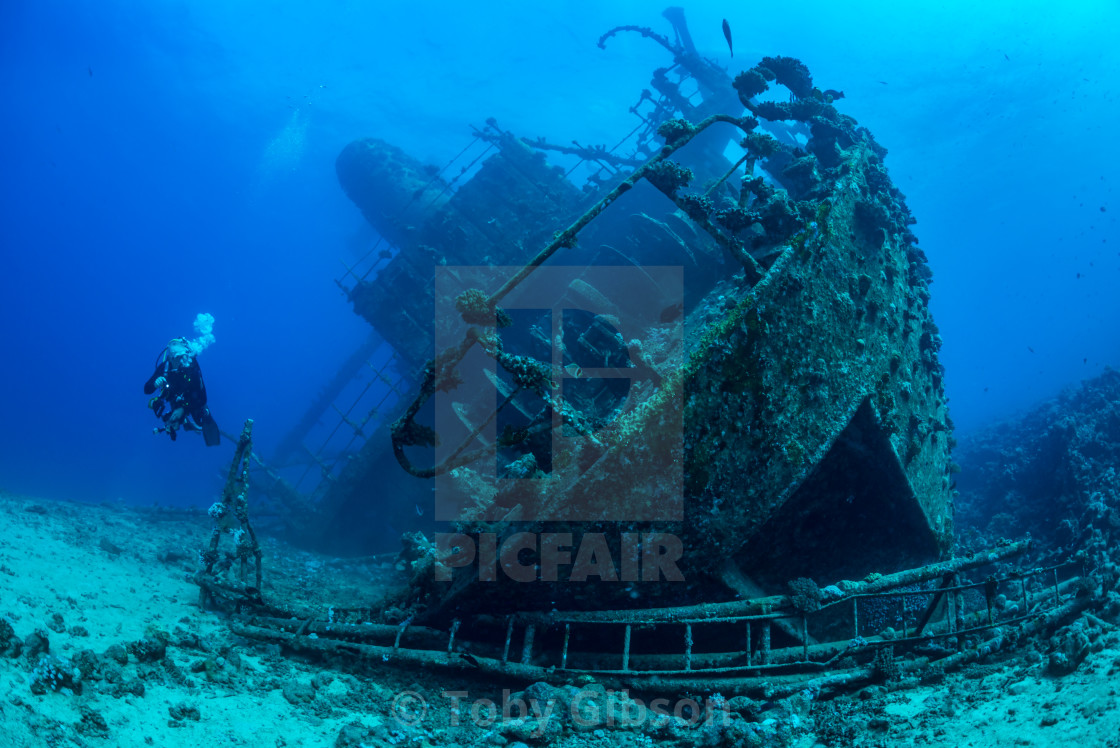 Diver exploring Red Sea wreck