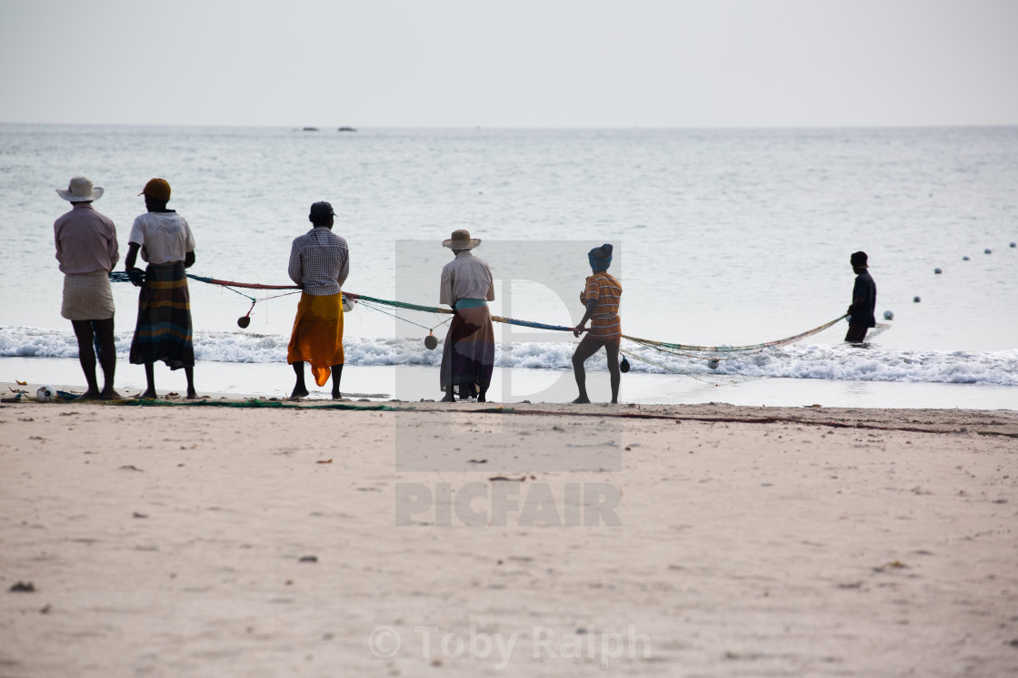 """Pulling in there net 2"" stock image"