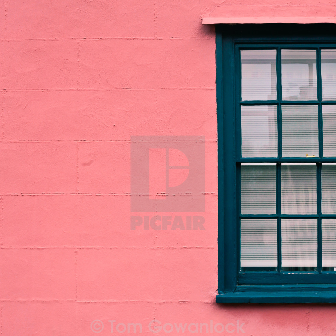 """Suffolk pink"" stock image"