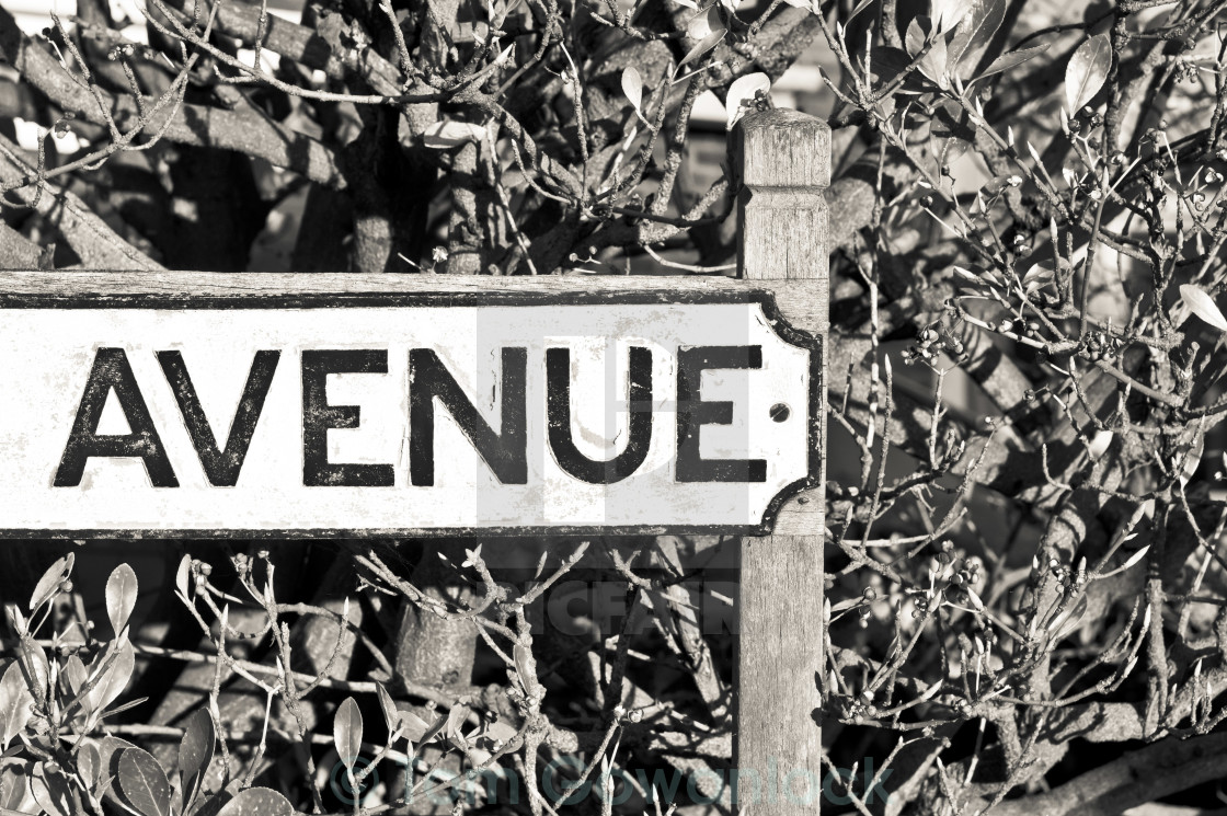 """Avenue sign"" stock image"