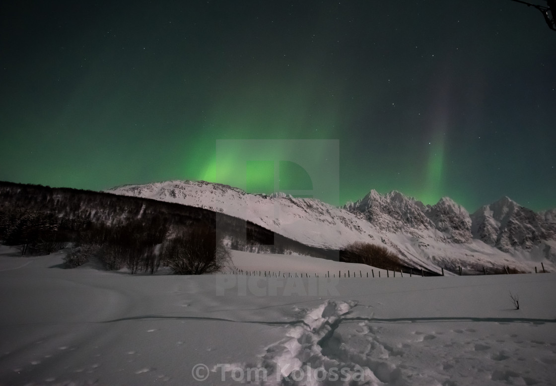 """Northern Lights in Norway"" stock image"