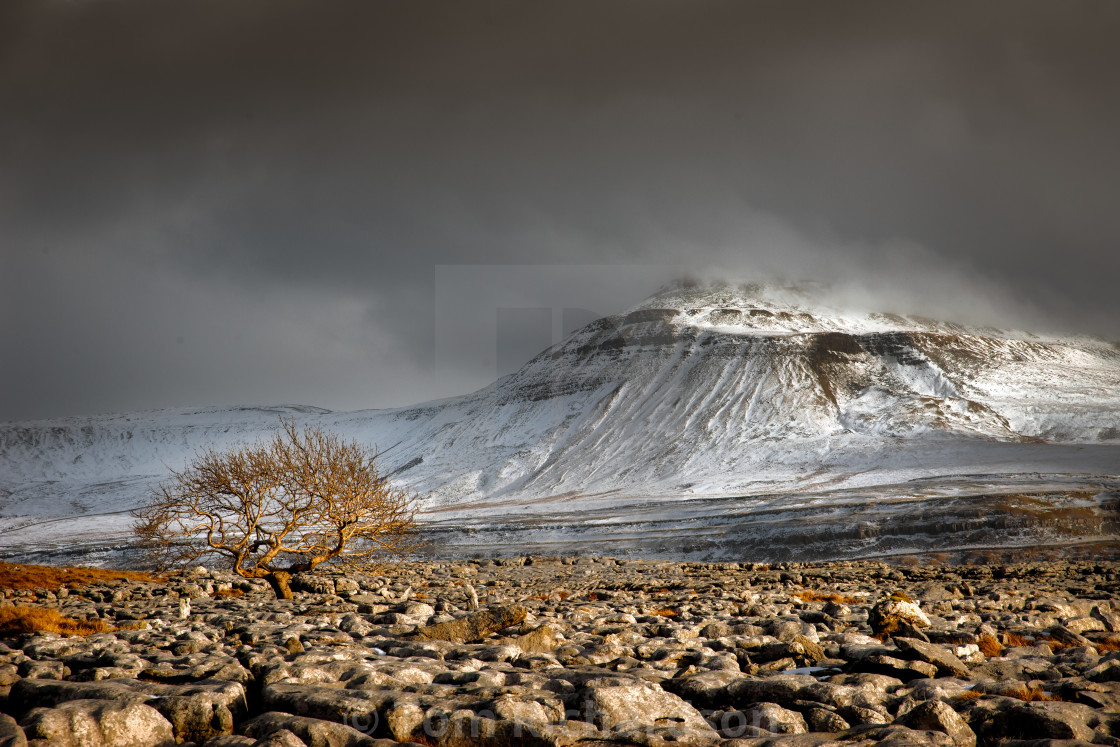 """Winter in the Dales"" stock image"