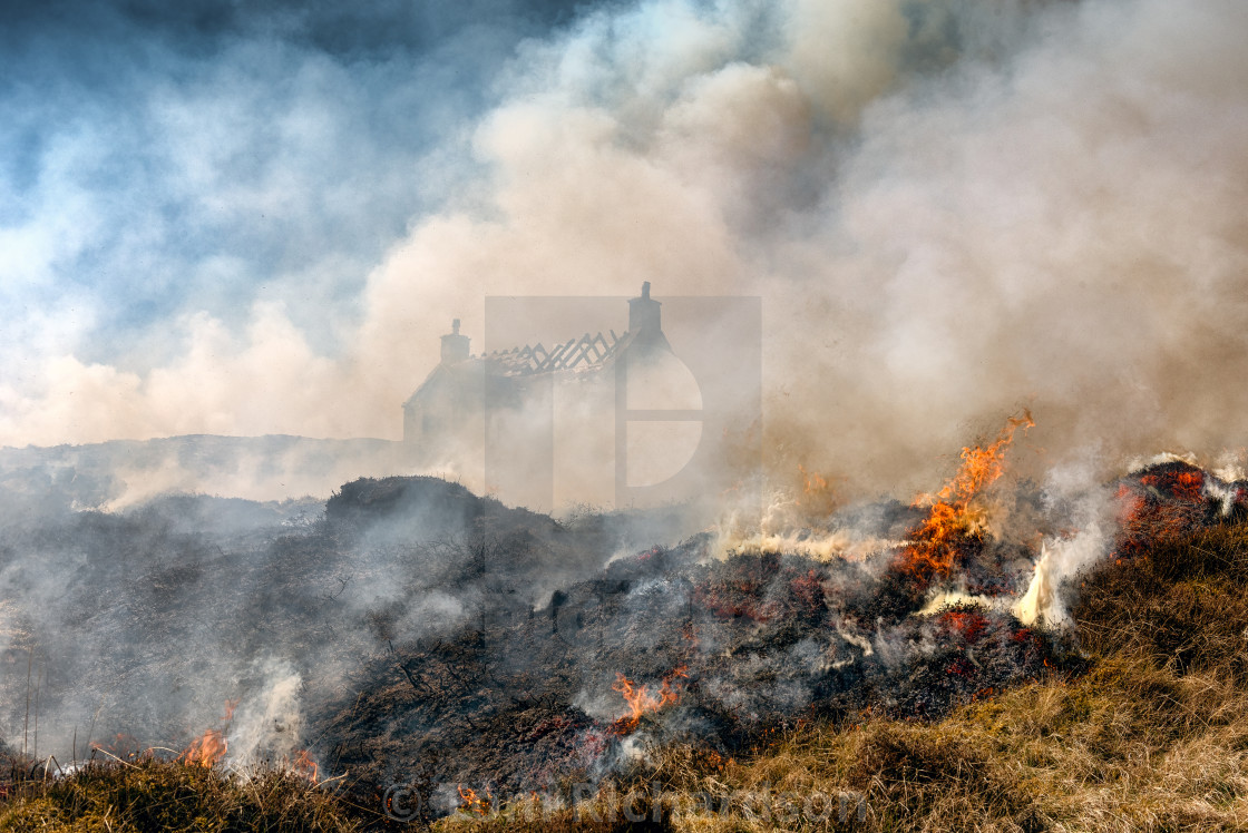 """Burning the heather Eriskay"" stock image"