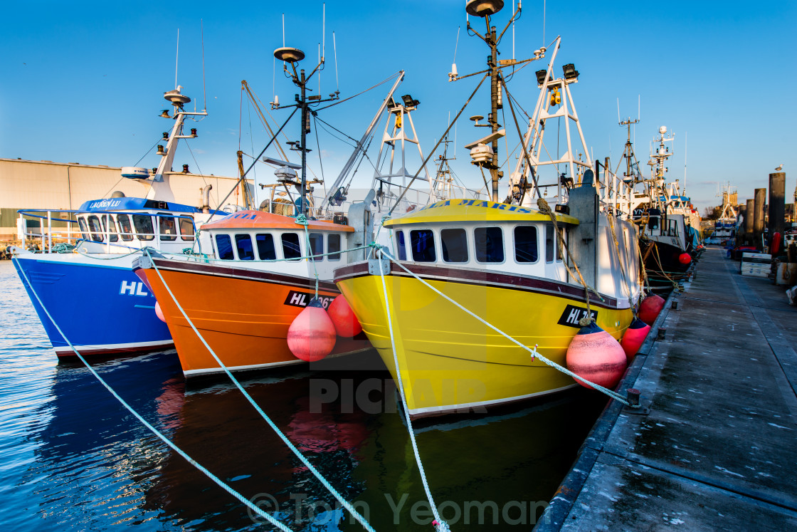"""Three for the Sea (wide)"" stock image"