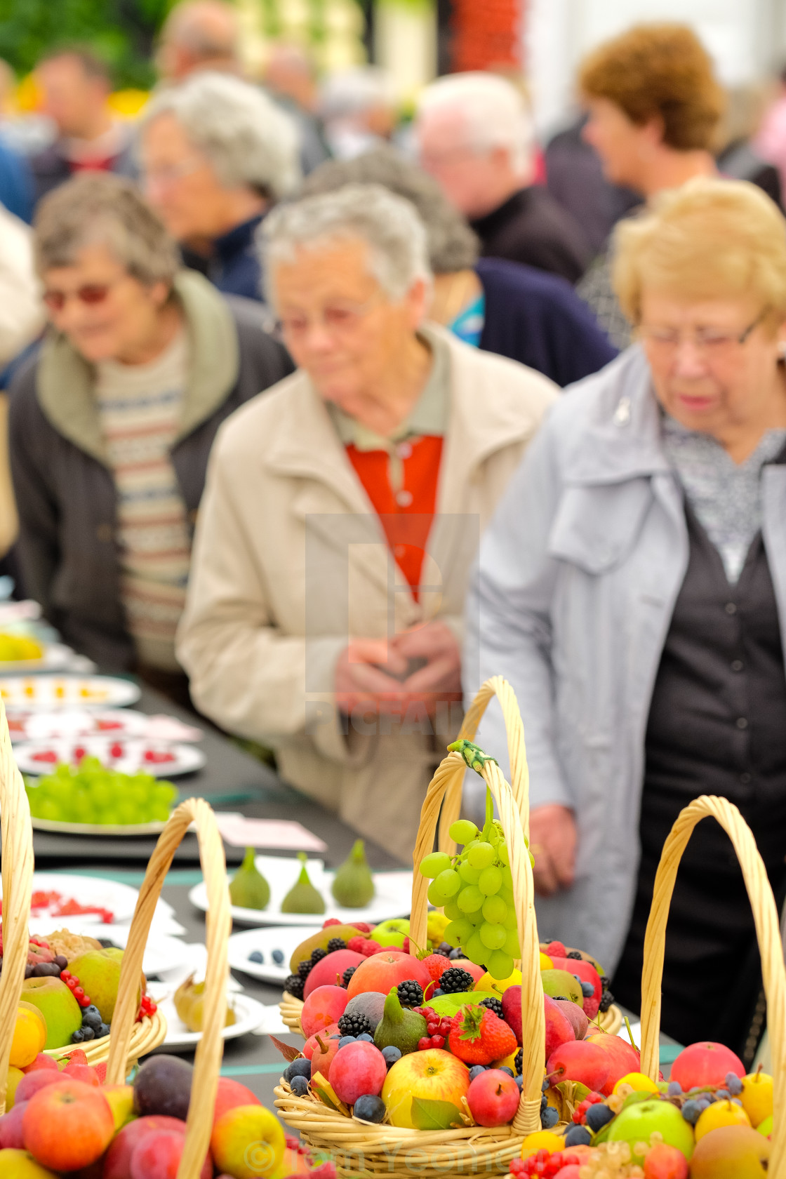 """""""Fruit baskets at show"""" stock image"""