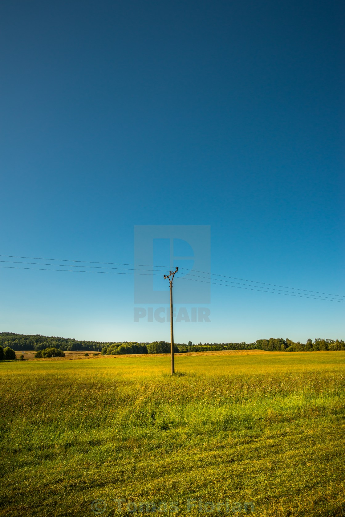 """Evening meadow with single electric pillar"" stock image"