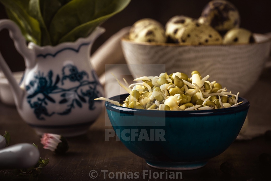 """Bowl full of mung bean sprouts on wooden board with spinach and eggs"" stock image"