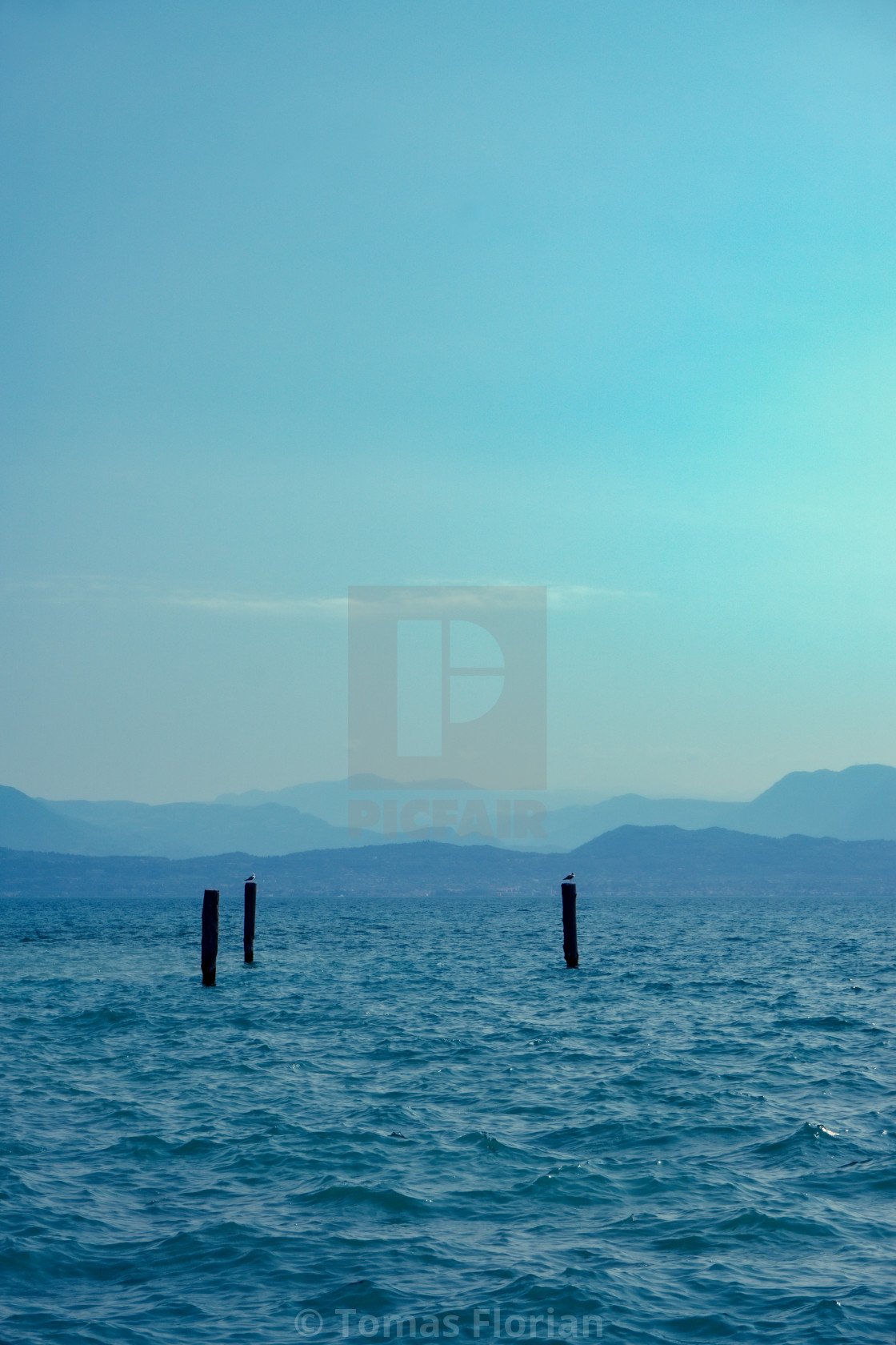 """View over Lago di Garda on mountains with birds"" stock image"