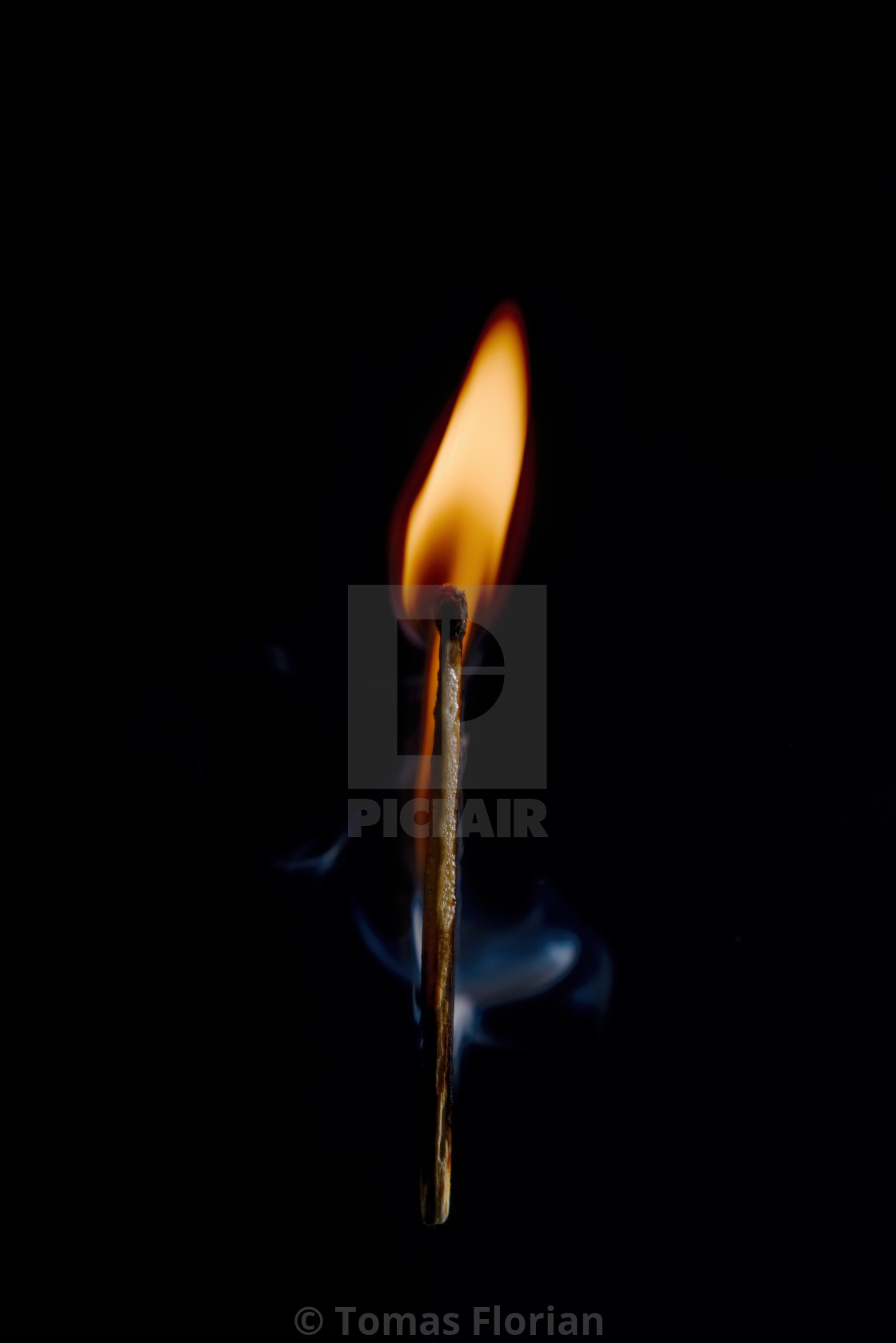 """Safety match on black background with flaming head"" stock image"
